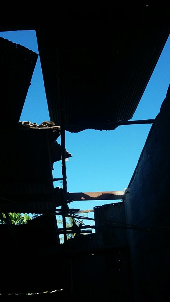Roof02